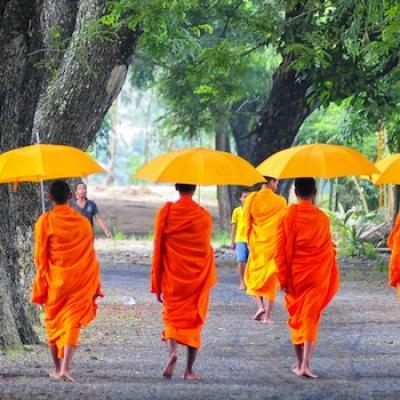 950 cambodia 5monks trees