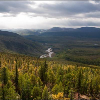 Foret riviere baikal lac russie 1