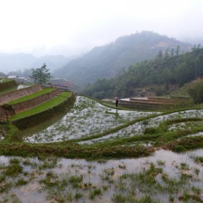 Malgre la pluie des paysages